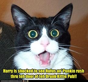 Harry is shocked to see Rufus an' Punkin rush thru teh door of teh Drunk Kittie Pub!!