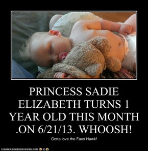 PRINCESS SADIE ELIZABETH TURNS 1 YEAR OLD THIS MONTH .ON 6/21/13. WHOOSH!