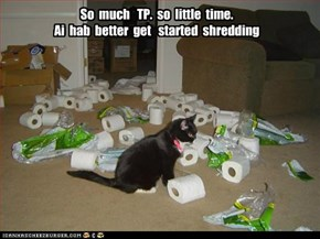 So  much   TP.  so  little  time. Ai  hab  better  get   started  shredding