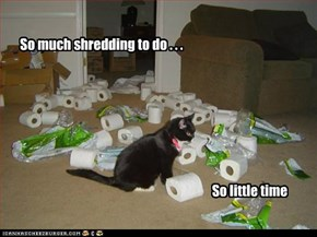 So much shredding to do . . .