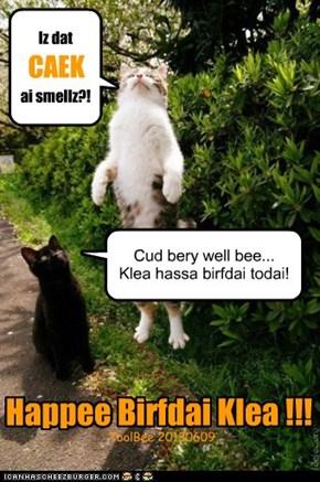 Happee Birfdai Klea !!!