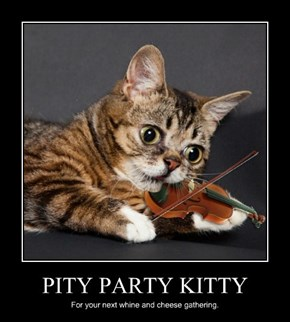 PITY PARTY KITTY