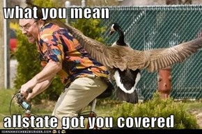 what you mean  allstate got you covered