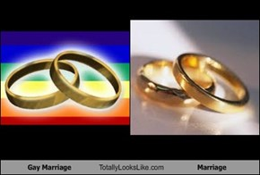 Gay Marriage Totally Looks Like Marriage
