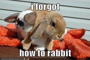 i forgot  how to rabbit