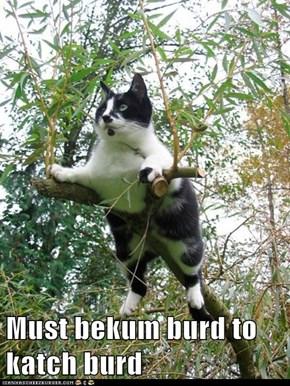 Must bekum burd to katch burd