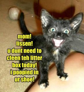 mom! lissen! u dunt need to cleen teh litter box today! i poopied in  ur shoe!