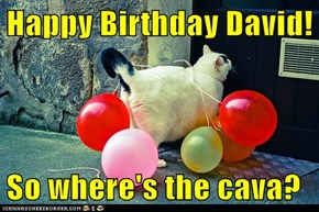 Happy Birthday David!  So where's the cava?