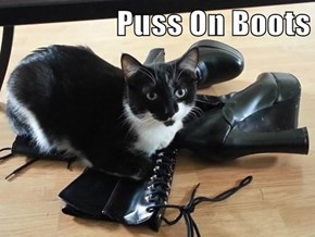Puss On Boots