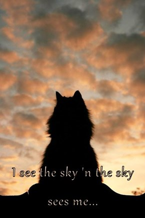 I see the sky 'n the sky sees me...