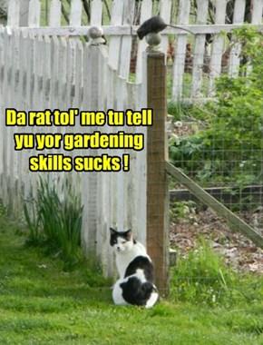 Da rat tol' me tu tell yu yor gardening skills sucks !