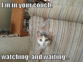 I'm in your couch.  watching. and waiting...