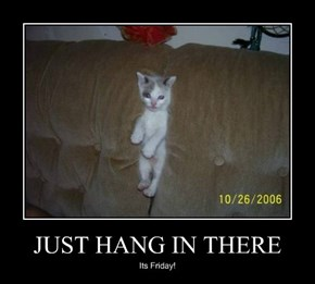 JUST HANG IN THERE