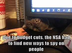 Due to budget cuts, the NSA had to find new ways to spy on people