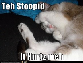 Teh Stoopid  It Hurtz meh