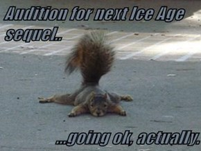 Audition for next Ice Age sequel..  ...going ok, actually.