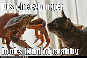 Dis cheezburger  looks kind of crabby
