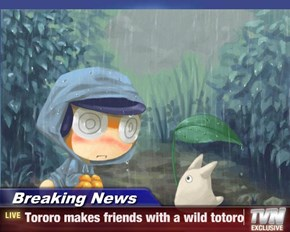 Breaking News - Tororo makes friends with a wild totoro