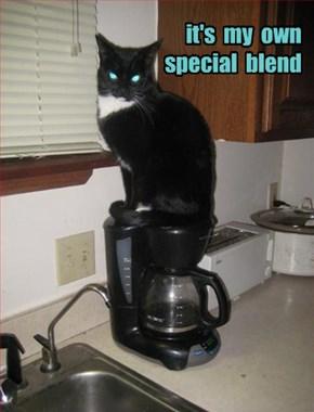 revenge is caffeinated