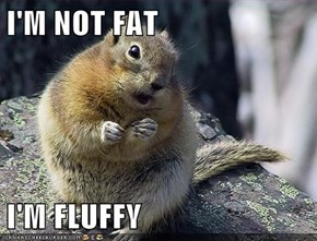 I'M NOT FAT  I'M FLUFFY