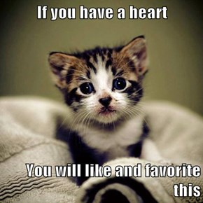 If you have a heart  You will like and favorite this