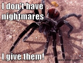I don't have nightmares  I give them!