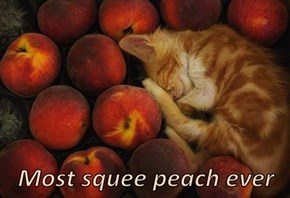 Most squee peach ever