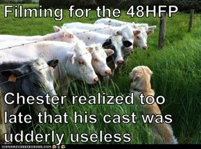 Filming for the 48HFP  Chester realized too late that his cast was udderly useless