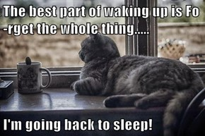 The best part of waking up is Fo-rget the whole thing.....  I'm going back to sleep!