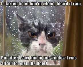 I started to let him in when I heard it rain,  But after I saw him in tne window I was afraid to open the door!