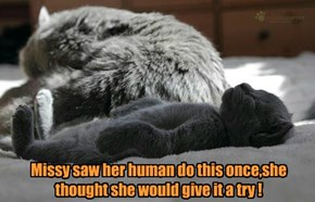 Missy saw her human do this once,she thought she would give it a try !