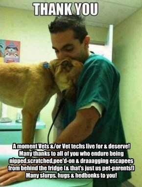 A moment Vets &/or Vet techs live for & deserve!  Many thanks to all of you who endure being nipped,scratched,pee'd-on & draaagging escapees from behind the fridge (& that's just us pet-parents!) Many slurps, hugs & hedbonks to you!