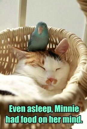 Even asleep, Minnie had food on her mind.