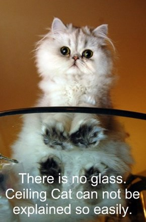 There is no glass. Ceiling Cat can not be explained so easily.