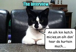 The interview.