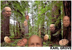 Karl Grove