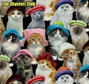 After her talk to teh Shysterz Club, Shadow an' her boyfrend Rufus handed out specially made hats an' caps to all teh Shysters.. a group picture was taken, and each of teh kitties talked to their mommie an' daddie by Skype, followed by ice cream!