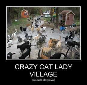 CRAZY CAT LADY VILLAGE