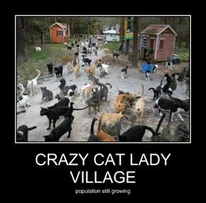 CRAZY CAT LADY VILLAGE