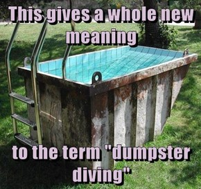 """This gives a whole new meaning  to the term """"dumpster diving"""""""