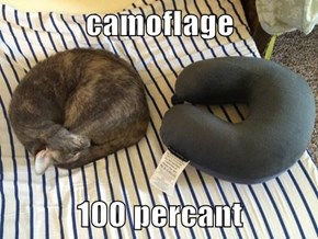camoflage  100 percant
