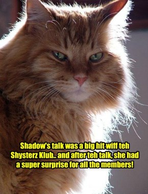 Shadow was very much liked by teh Shysters, especially teh boy Shysters!