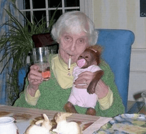 I attribute my long life to Fosters Beer and fostering monkeys