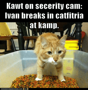 Kawt on secerity cam: Ivan breaks in catfitria at kamp.