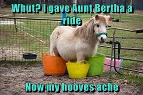 Whut? I gave Aunt Bertha a ride  Now my hooves ache