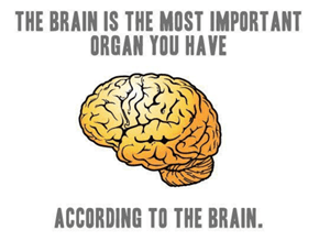 The Brain Knows What is Most Important