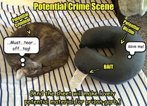 Potential Motive: Cat!