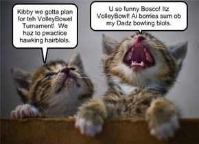 Kamp KupppyKakes VolleyBlol Turnament - Bosco and Kibby have a confoozle