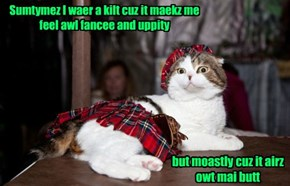 Kittehz Can Be Sew Indelicat
