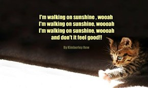 I'm walking on sunshine , wooah  I'm walking on sunshine, woooah  I'm walking on sunshine, woooah  and don't it feel good!!